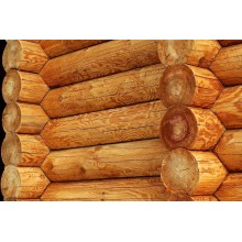 Сруб из лиственницы